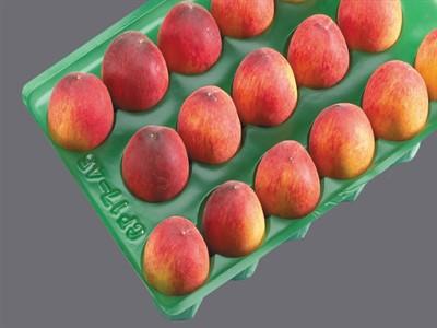 شانه میوه پلاستیکی هلو