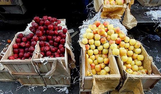 فروش پوشال میوه